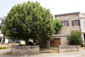 Maison de village avec jardin à 10 min au sud de Carcassonne